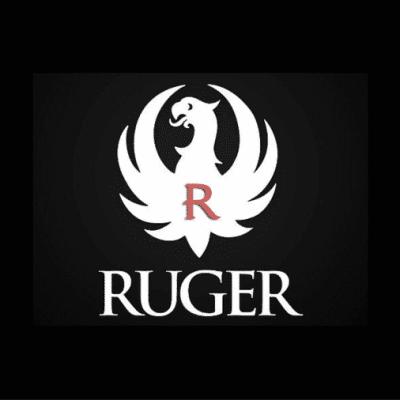 Ruger IWB Holster